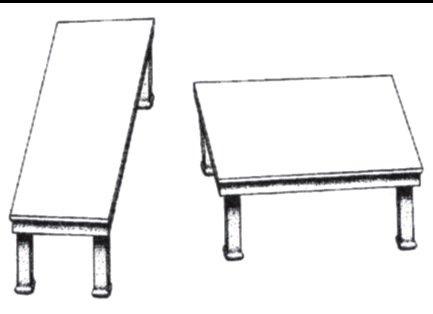 Banaji und Greenwald zeigen am Beispiel der Shepard-Tische, wie uns unser Gehirn in die Irre führen kann.