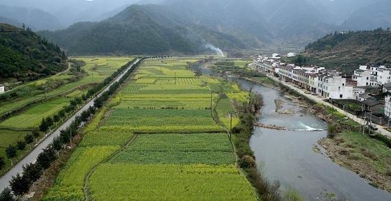 Einzugsgebiet des Jangtsekiang-Flusses in Südchina. Hier wird Wald gerodet, um Platz für Ackerland und Teeplantagen zu schaffen.