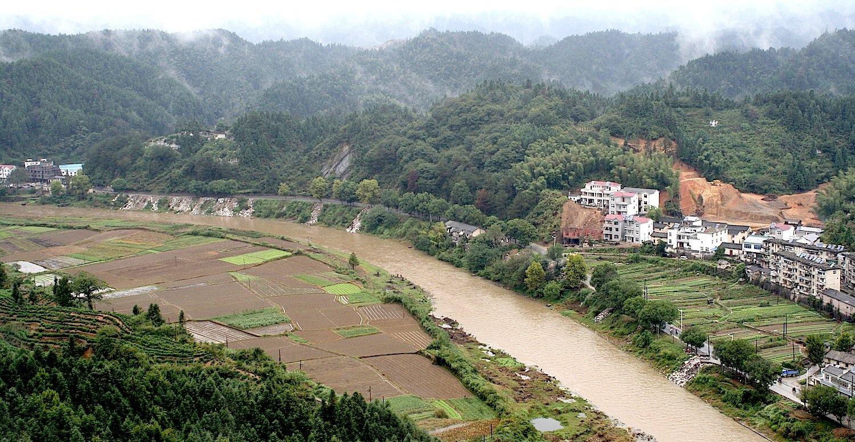 Mit 6380 Kilometern ist der Jangtsekiang der längste Fluss Chinas. Die zunehmende Waldrodung für Ackerland und Teeplantagen bedroht Insektenlarven, Schnecken, Würmer und Egel. Das fanden Forscher aus Deutschland heraus.