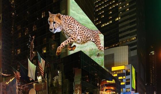 Ungefähr so könnten Werbetafeln in Zukunft aussehen: Das Bild verändert sich mit dem Betrachtungswinkel, sodass Passanten um den Geparden herumgehen können.
