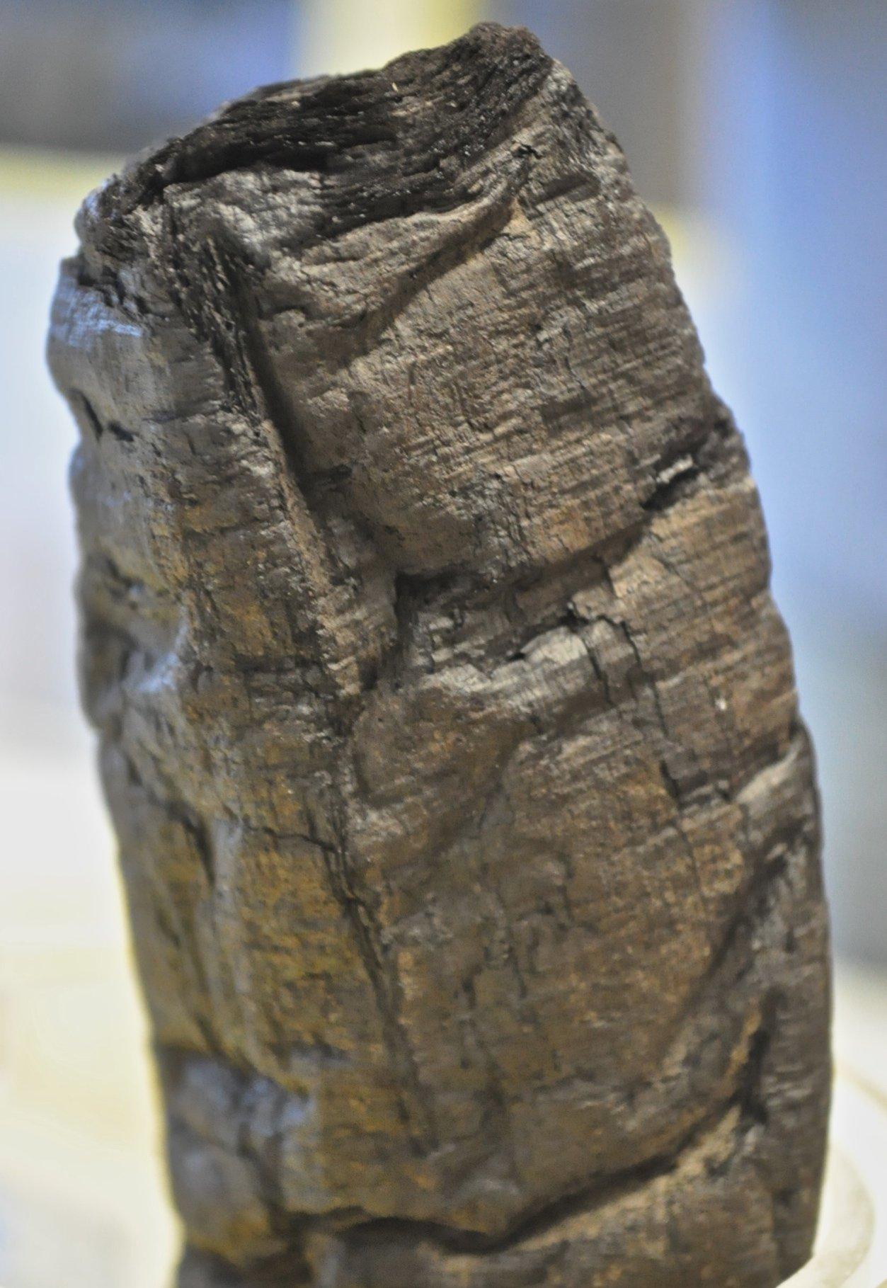Hunderte solcher Papyrusrollen aus der Antike wurden vor 260 Jahren in der Bibliothek Villa die Papyri in derStadt Herculaneum entdeckt. Durch die Hitze des Vesuv-Ausbruchs im Jahr 79 nach Christus sind sie stark verkohlt.