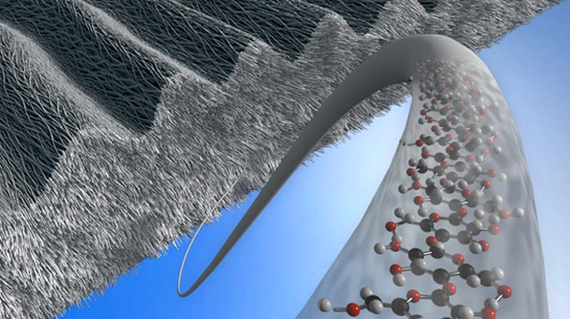 Eine Beschichtung aus mikrostrukturierter Zellulose - wie der dargestellten Schicht mit Linienraster - könnte Implantate verträglicher machen.