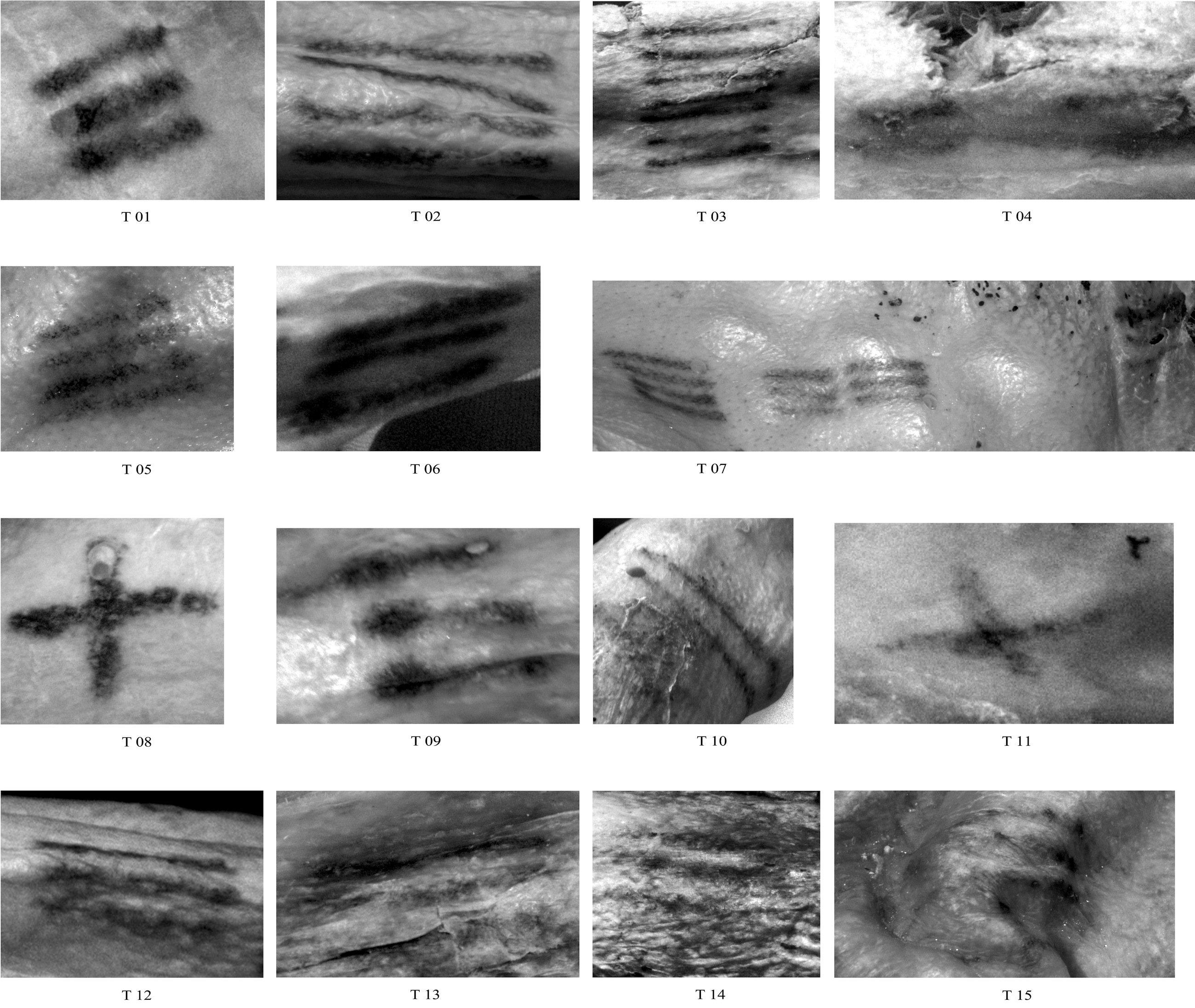 Die mit multispektralen Techniken fotografierten Tätowierungen: Eine Tätowierung auf der Brust wurde nur durch die moderne Fototechnik entdeckt.