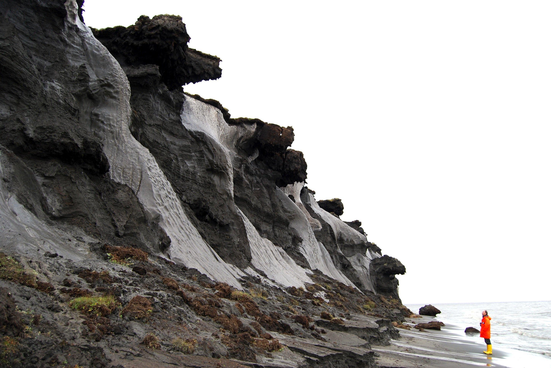 Durch die Erosion an der sibirischen Küste im Lena-Delta werden bis zu 40 Meter hohe Eiskeile freigelegt, die AWI-Forscher während des sibirischen Sommers untersucht haben.
