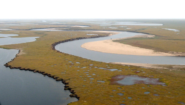 Das Lena-Delta im sibirischen Sommer: Dort haben Forscher des Alfred-Wegener-Institut 100.000 Jahre alte Eiskeile untersucht. Das Ergebnis: Die Temperaturen im Winter Sibiriens steigen schon seit 7000 Jahren.