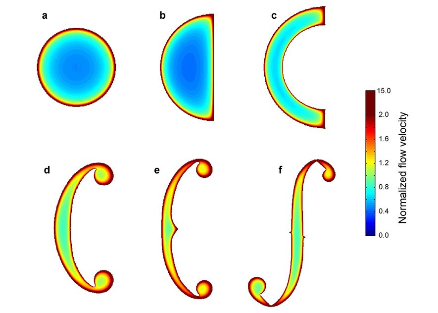 Die MIT-Forscher habenHunderte von Geigen untersucht und dabei festgestellt, dass die Form des Klangloches entscheidenden Einfluss auf den Klang hat.Dabei stellte sich heraus, dass die Luftströme an den Rändern der Schalllöcher am stärksten und schnellsten waren und zur Mitte hin deutlich abfielen. Das heißt, ein Schallloch mit möglichst viel Rand und wenig Innenraum ist für die Klangfülle optimal.