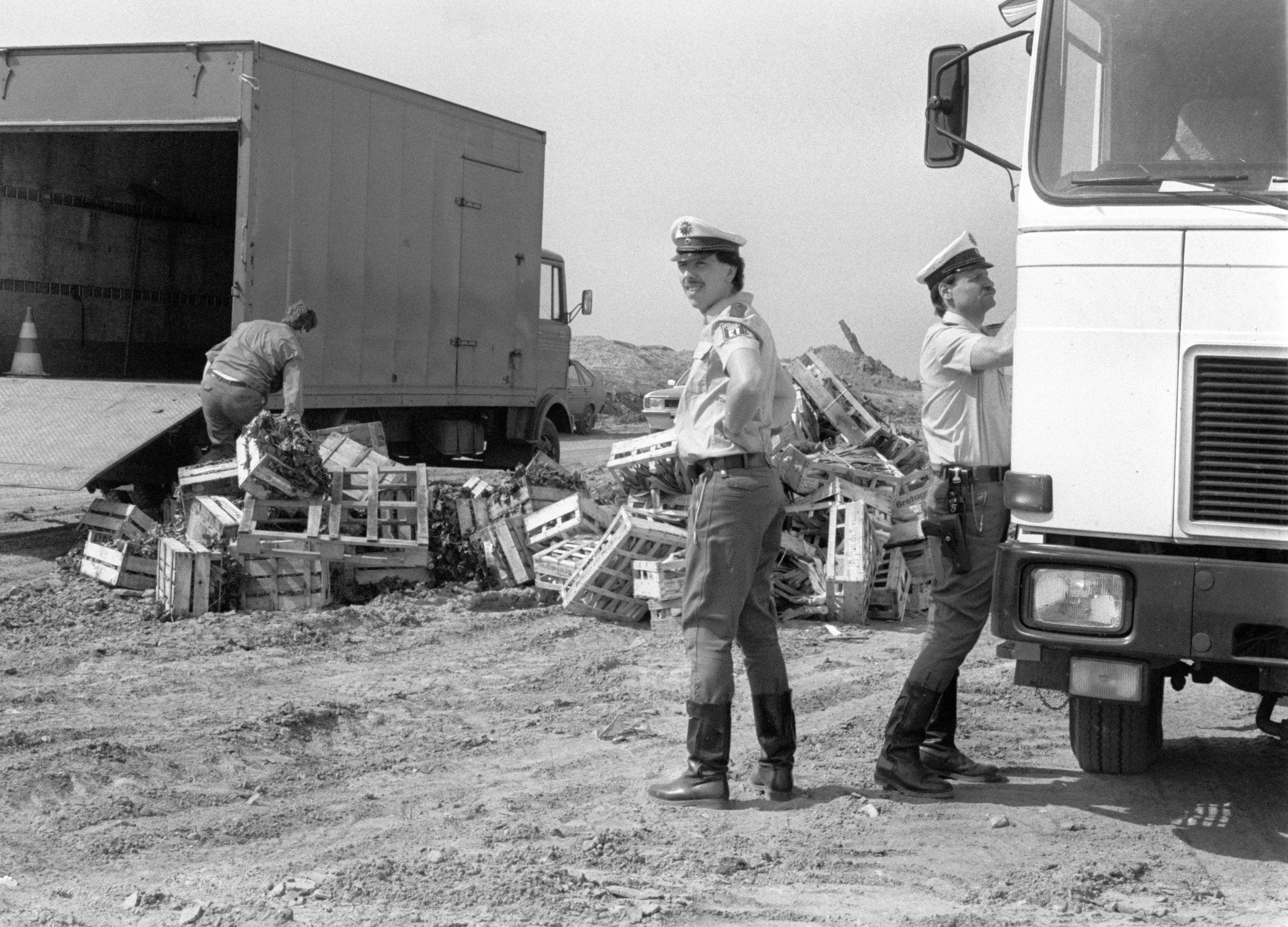 Unter Polizeischutz wird beschlagnahmtes, strahlenbelastetes Gemüse zur Vernichtung auf der Mülldeponie Wannsee abgeladen (Archivfoto vom 06.05.1986). Die durch den Reaktorunfall in Tschernobyl abgegebene Radioaktivität hatte damals in weiten Teilen Europas zu erhöhter Strahlenbelastung bei landwirtschaftlichen Freilandprodukten geführt.