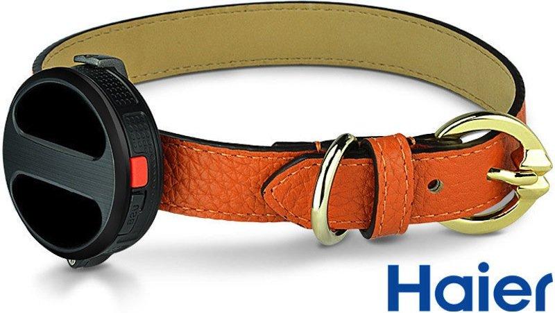 Haier bietet auch ein Hundehalsband mit GPS-System an. Besitzer können dann entlaufene Tiere schnell orten.