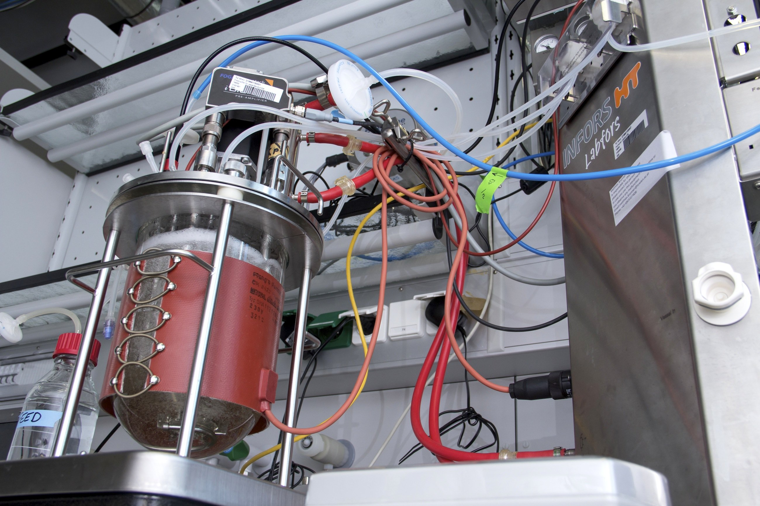 Bioreaktor mit halophilen Bakterien an der TU Wien: Diese überleben bei Temperaturen von mehr als 100 Grad Celsius, in Lösungen, die eine vielfach höhere Konzentration an Salz aufweisen als Meerwasser, in starken Säuren oder Laugen und bei Temperaturen weit unter Null Grad Celsius.
