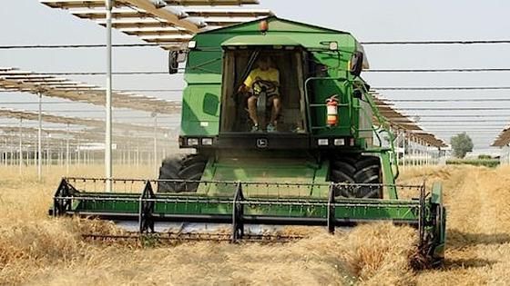 In Italien installierte das Unternehmen R.E.M. bereits im Jahr 2011 drei Prototypen einer AVP-Anlage. Anders als in der Anlage des Fraunhofer ISE am Bodensee kommen dort allerdings bewegliche Solarmodule zum Einsatz, die sich nach der Sonne ausrichten.