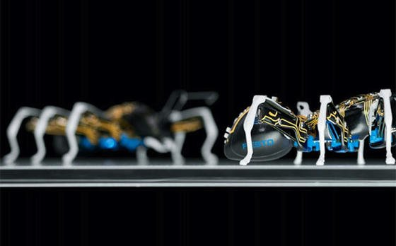 sehen beeindruckend gefhrlich aus die roboter ameisen von festo die das unternehmen auf - Festo Bewerbung