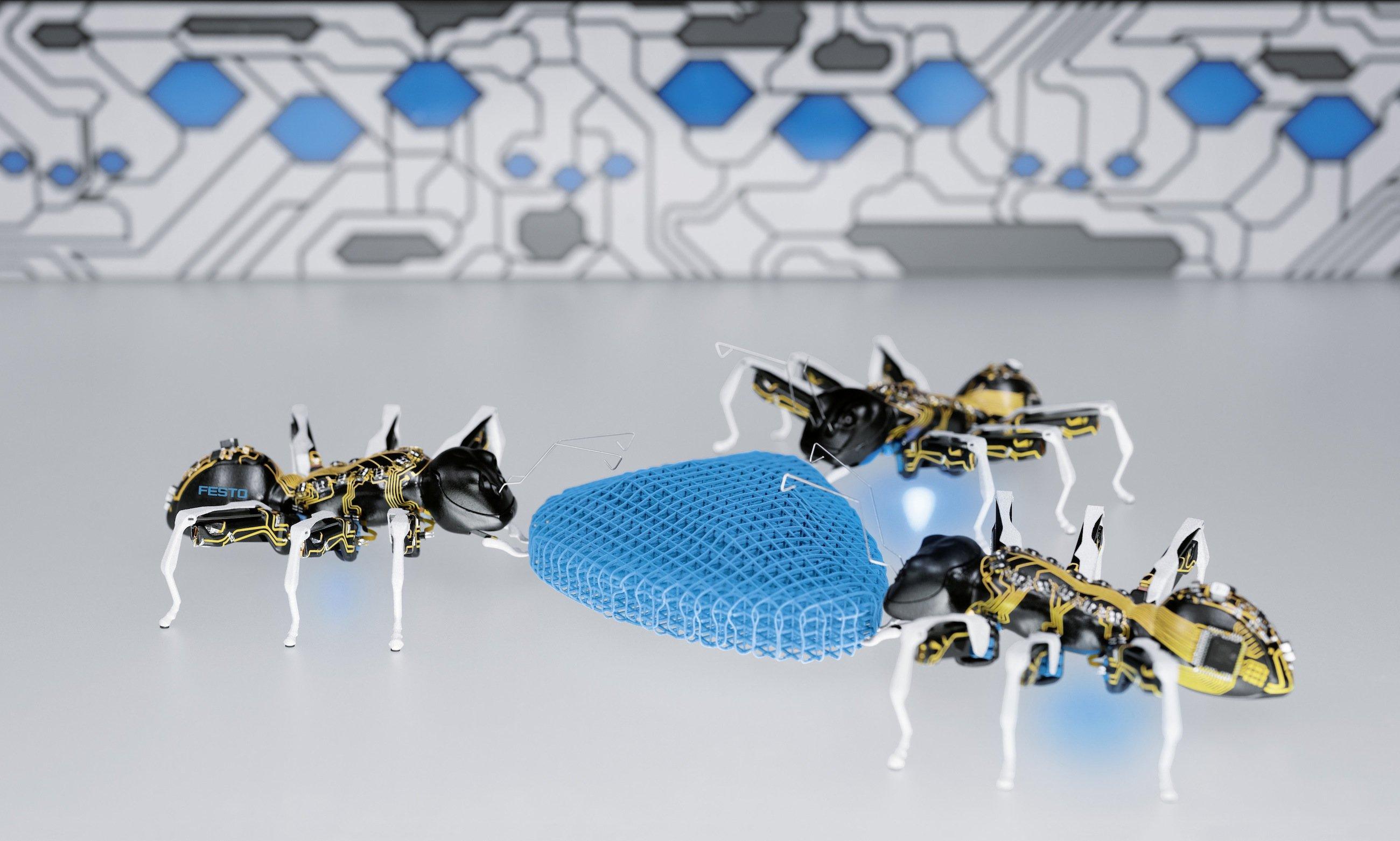 Gemeinsam sind wir stärker: Die BionicAnts bewegen Objekte, die sie alleine niemals bewegen könnten. Genauso, wie die echten Ameisen fette Käfer in ihren Bau befördern.