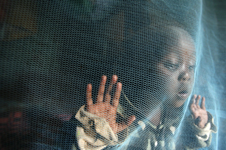 Die dreijährige Siama Marjan spielt in Nairobi hinter einem Moskitonetz gegen Malaria-Mücken. Jedes Jahr sterben rund 600.000 Menschen an Malaria. Jetzt gibt es Hoffnung auf einen wirksamen Impfstoff, der vor allem bei Kindern besonders gut wirkt.