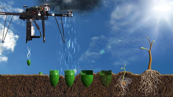 Die Pflanzdrohne schießt Kapseln in die Erde, die einen schon gekeimten Baumsamen mit Nährflüssigkeit enthält. Nachdem sich die Hülle im Boden zersetzt hat, wächst der Keimling. Pro Minute kann eine Drohne zehn Samen verschießen.
