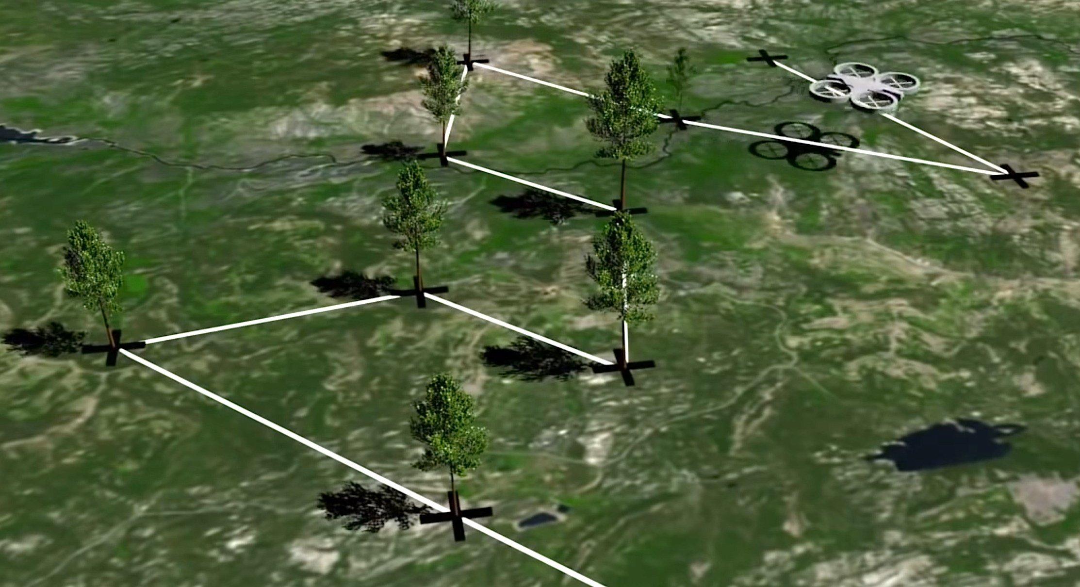 Die Drohne fliegt ein zuvor erfasstes Gelände ab und pflanzt die Bäume an festgelegten Standorten.