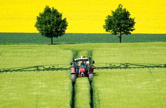 Bauer beim Spritzen eines Gerstenfeldes:Die wachsenden Flächen von Monokulturen in der Landwirtschaft gefährden zunehmend die Artenvielfalt von Pflanzen und Tieren. Zu diesem Ergebnis kommt dererste Artenschutzbericht des Bundesamtes für Naturschutz.