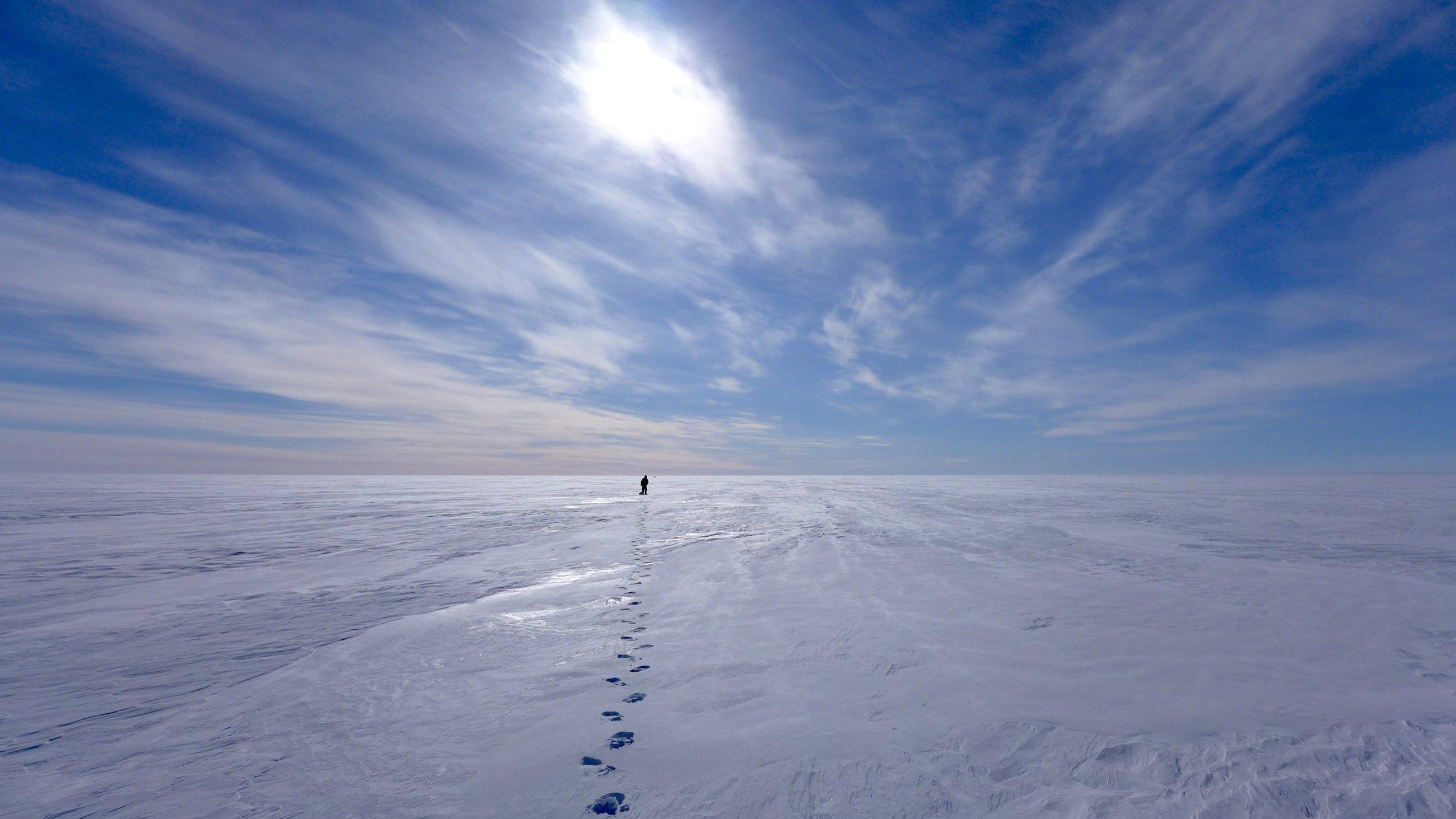 DLR-Forscher Georg Fischer läuft zu der nächsten Stelle auf Grönland, an der ein Radar-Reflektor platziert wird. Am South Dome, dem höchstgelegenen Testgebiet, herrschten günstige Wetterbedingungen, die es ermöglichten, die Radarreflektoren in einer Entfernung von bis zu einem Kilometer vom Flugzeug entfernt zu verankern.