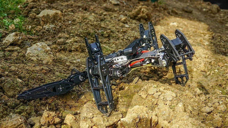 Laufroboter im Gelände: Der neue Algorithmus soll die Maschinen bei Bergungsarbeiten so flexibel machen, dass sie selbstständig das beste Bewegungsmuster für das Überwinden eines Hindernisses wählen.