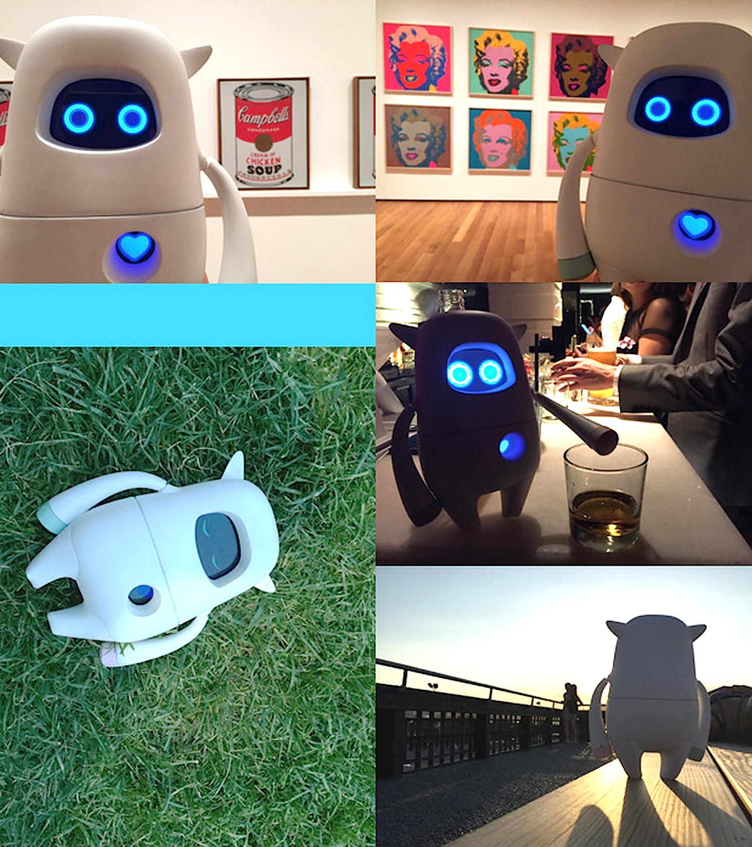 Musio gibt sich im Alltag menschlich: Der Roboter kann sogar Furzgeräusche von sich geben und Witze erzählen.