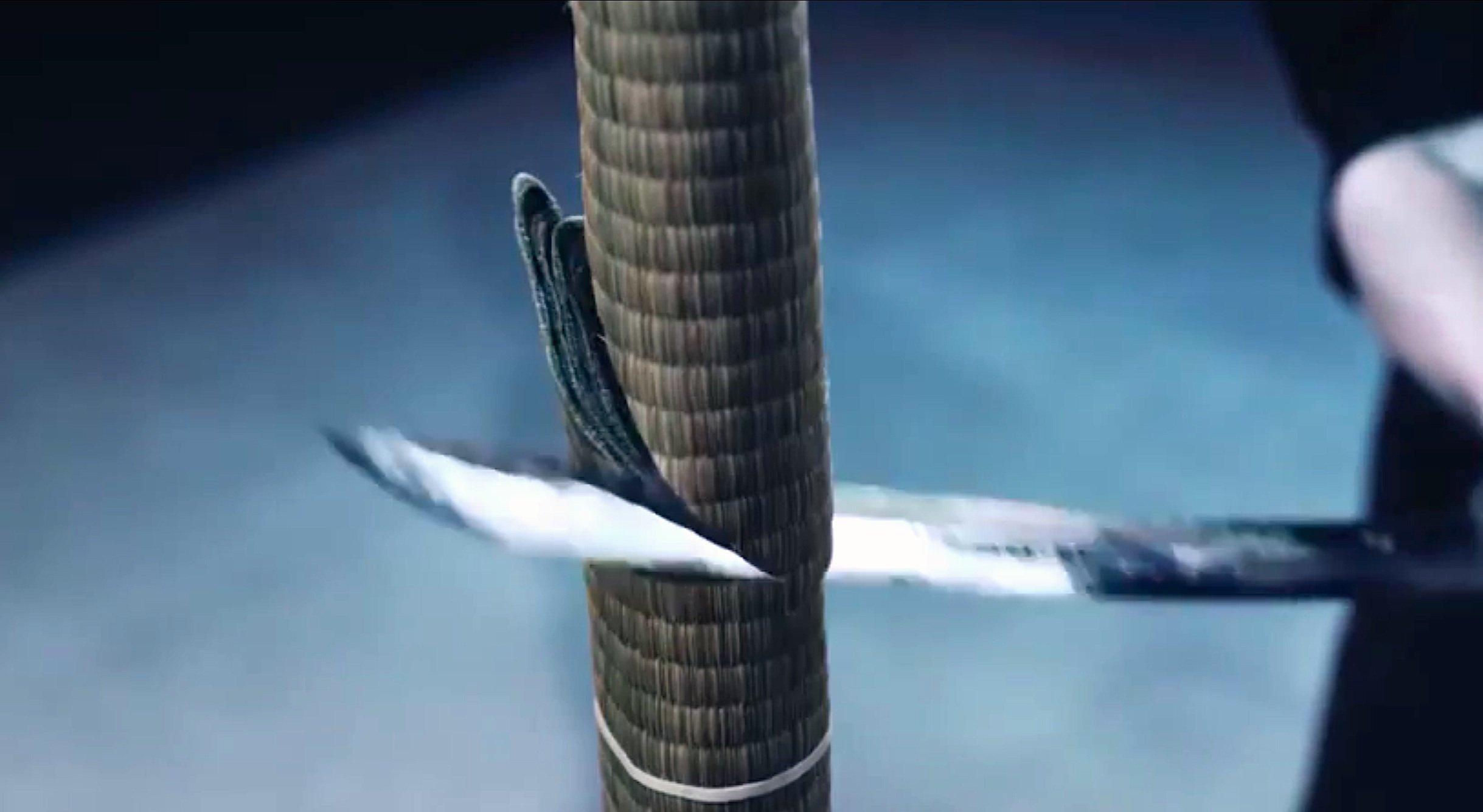 Diagonalschnitt mit einem Samurai-Schwert von SchwertmeisterIsao Machiidurch eine zusammengerollte Bastmatte.