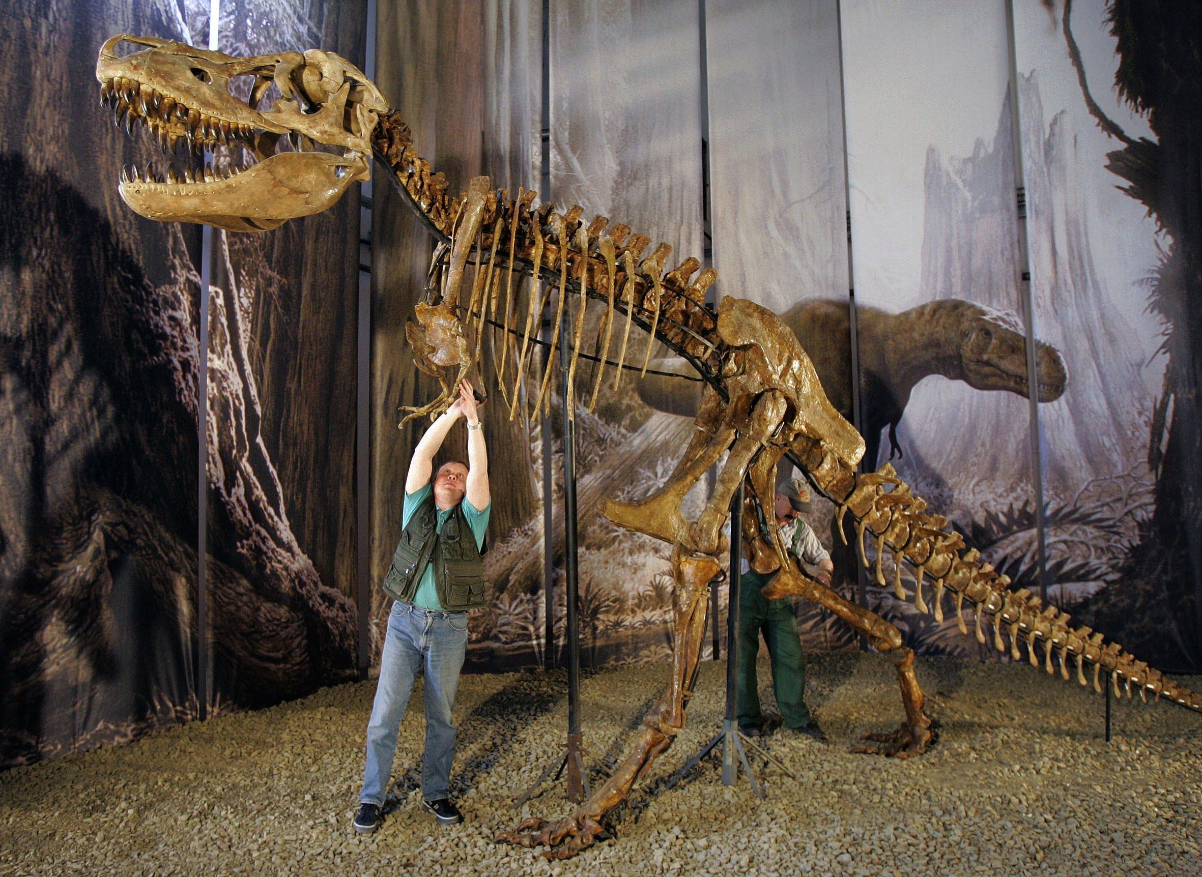 Ereilt die Menschheit ein ähnliches Schicksal wie die Dinosaurier? Forscher glauben Belege dafür gefunden zu haben, dass die Spezies Homo Sapiens der sechsten Massenaussterbungs-Welle zum Opfer fallen könnte.