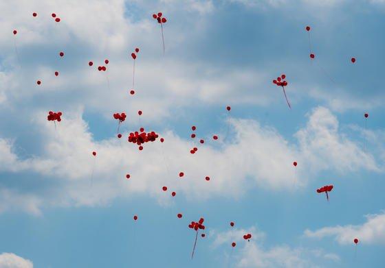 Rote Luftballons steigen zum Weltblutspendertag am 14. Juni 2015 von der Stadtbrücke über die Oder in Frankfurt in den Himmel auf. Verlieren Menschen bei Unfall oder OP große Mengen an Blut, geht es um Leben und Tod. Forscher arbeiten an neuen Möglichkeiten, Blutungen zu stoppen und Blut künstlich herzustellen.