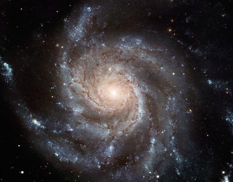 Die Feuerrad-Galaxie.