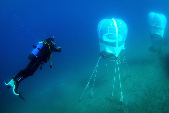 Die Prototypen der kleinen Gewächshäuser sind 6 bis 8 m unter der Wasseroberfläche am Meeresboden verankert. Die Pflanzen sollen angeblich doppelt so schnell wachsen wie an Land.