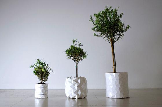 """Der mitwachsende Blumentopf """"Growth"""" faltet sich nach Außen auf, wenn der Wurzeldruck an den Wänden groß genug wird. Dadurch verändert sich nicht nur das Volumen, sondern auch das Design des Topfes."""