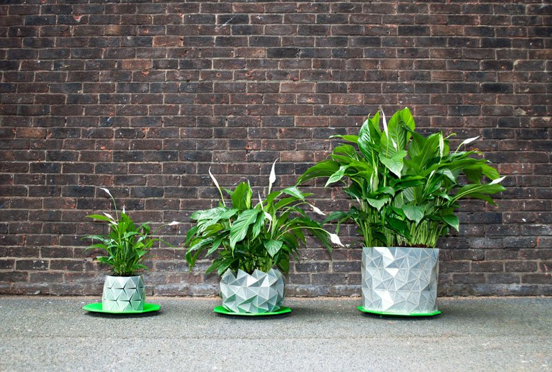 """Verändert beim Wachsen auch das Aussehen: Der Blumentopf """"Growth"""" des Londoner Designerduos Bike und Begum Aykasan."""