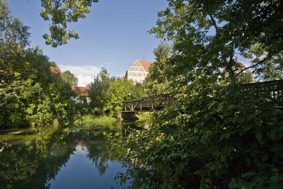 Die Fahrradtour führt direkt durch das Schwäbische Donautal.