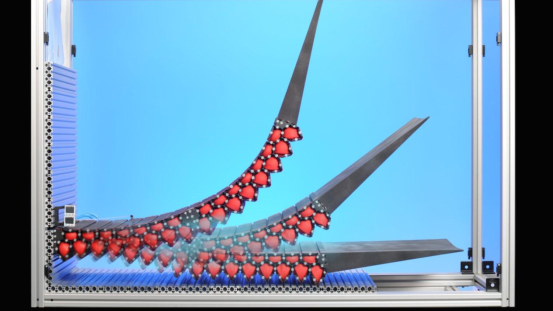 Alternative zur klassischen Landeklappe: Die Technologie des DLR ermöglicht einen spaltfreien Übergang zwischen Tragfläche und Klappen.