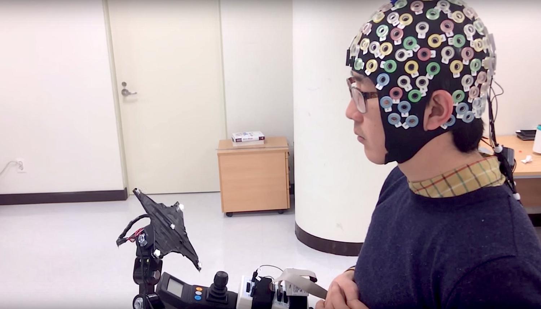 Der Proband richtet seine Aufmerksamkeit auf eine von fünf flackernden LEDs. Sie repräsentieren unterschiedliche Bewegungen des Exoskeletts. Seine Wahl lässt sich im EEG ablesen und in Steuerungsbefehle übersetzen.