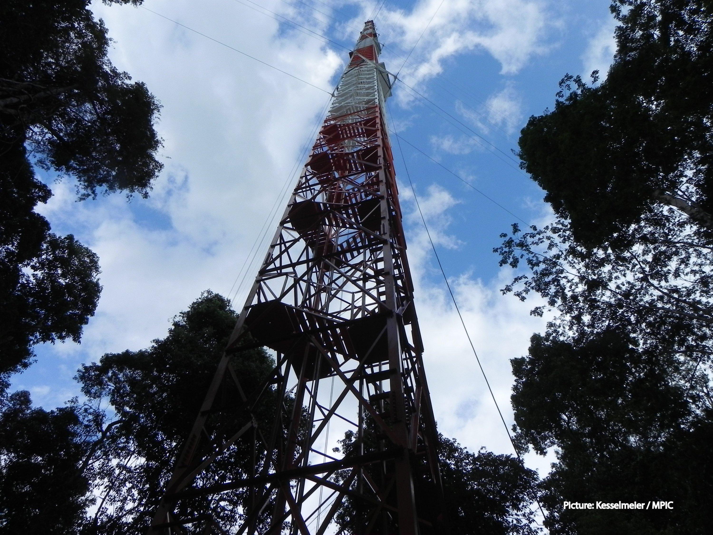 Klima-Messturm Atto: Er steht im brasilianischen Regenwald, 150 km nordöstlich von Manaus.