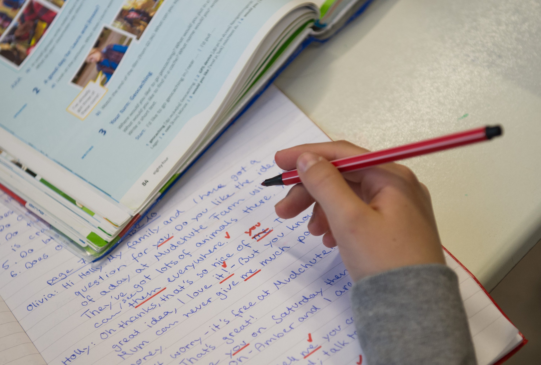 In vielen deutschen Schulen mangelt es an Computern. Was das anbelangt belegt die Bundesrepublik nur Platz 28 unter 34 OECD-Mitgliedsstaaten.