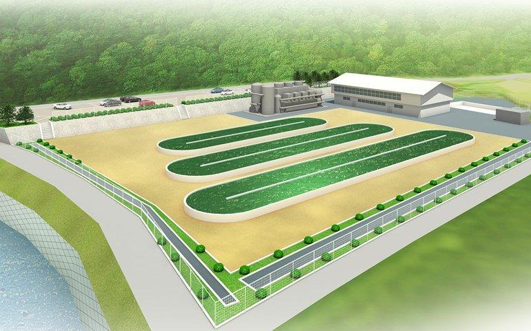 Die Denso-Pläne: Auf einer Fläche von 20.000 m2sollen drei ovale Zuchtteiche für Algen entstehen.