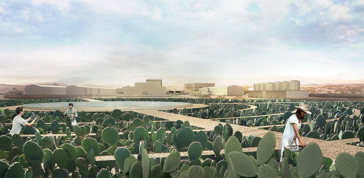 Auf Ali Chens Kaktus-Plantage gibt es deshalb neben den riesigen kreisförmigen Anbaugebieten für den Nopal auch Aufbereitungsanlagen für Abwasser.