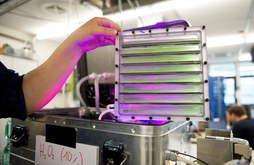 Prototyp eines Photobioreaktors der Uni Stuttgart, in dem Algen als Nahrungsquelle im Weltall gezüchtet werden.