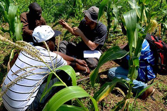Volker Häring diskutiert mit Bauern in Tamale (Ghana) über Bodenfruchtbarkeit. Biokohle nimmt dabei eine Schlüsselrolle ein.