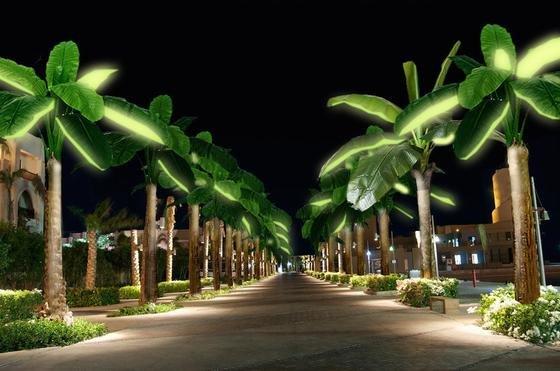 Sieht schickt aus, oder? Nachts spenden die Blätter der Solarpalmen Licht.