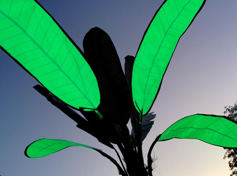 Leuchtende Blätter der Solarpalme: Im Sommer reicht eine Akkuladung für fünf Stunden Beleuchtung.