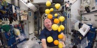 Weltrekord: Niemand war länger im All als dieser Astronaut