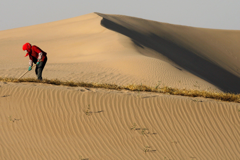 Arbeiten in der Wüste: In der Golf-Region dürften bis zum Ende des Jahrhunderts Tagestemperaturen von60 °C an der Tagesordnung sein. Der Aufenthalt im Freien ist dann kaum noch möglich.