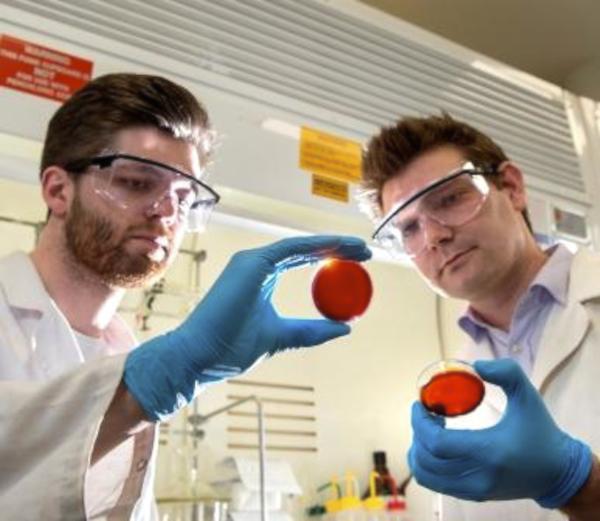 Der australische Chemiker Chalker (li.) und sein Mitarbeiter Max Worthington präsentieren SLP, eine Substanz, die Quecksilber bindet.