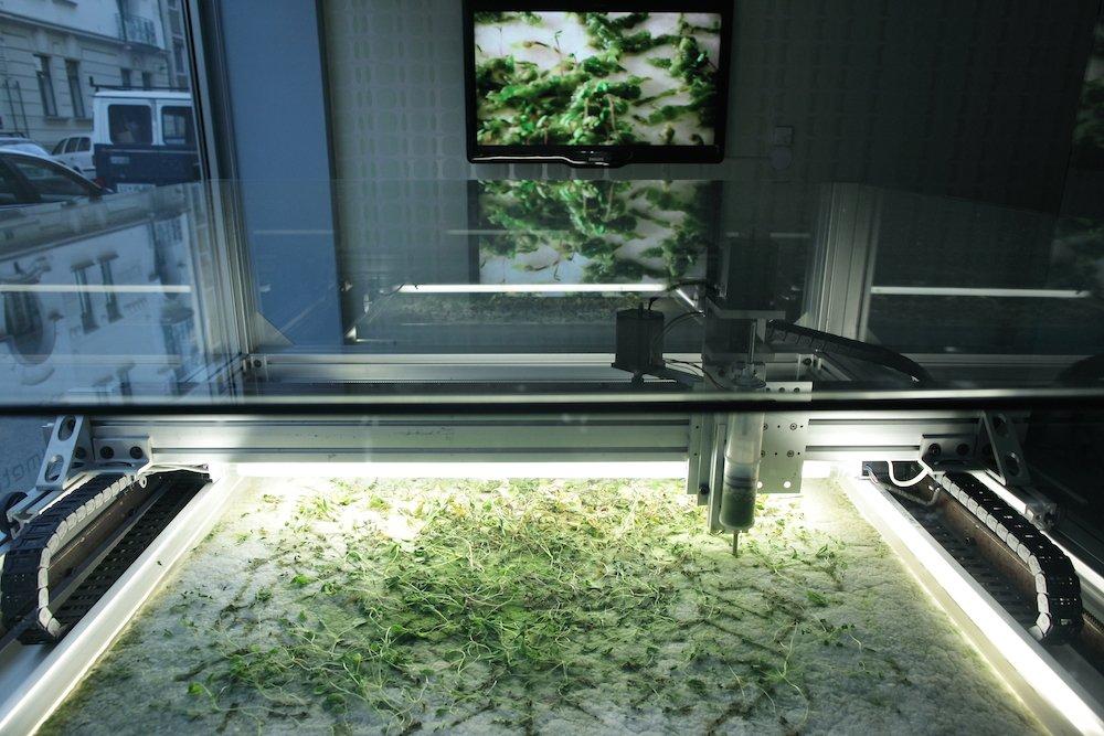 """Die 35-jährige Allison Kudla aus Seattle druckt mit einer selbstgebauten CNC-Maschine bio-architektonische Konstrukte aus Algen und Samen. Dafür nutzt sie einen computergesteuerten Positionierungstisch. Werden die Samen in das Wachstumsmedium – ein durchsichtiges Gel – eingebracht, wachsen die Algen weiter und die Samen keimen. So verknüpfen sich die Konzepte """"Stadt"""" und Organismus""""."""