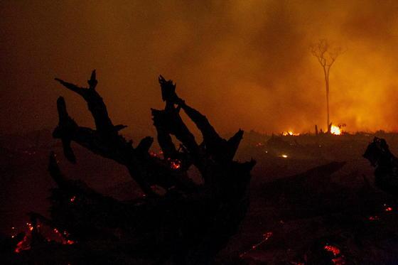 Wildfeuer am Rand von Palangkaraya in Indonesien. Die Aufnahme stammt vom 1. November 2015. Selbst aus der Nähe ist kaum etwas zu erkennen.
