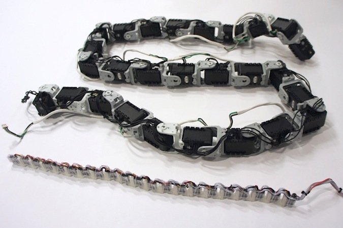 So sieht Lineform ohne Schutzhülle aus: Der Schlangenkörper besteht ausaneinandergereihten gelenkigen Aktoren. Dazu kommenSensoren, ein Mikrofon und ein Lautsprecher.