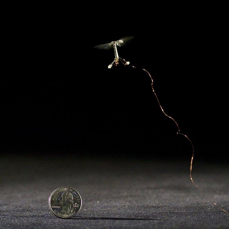 Die fliegenden Roboter-Bienen sind so leicht, dass es noch etwa drei Jahre dauern wird, bis die LiDAR-Technik so miniaturisiert ist, bis die Fluggeräte sie tragen können.