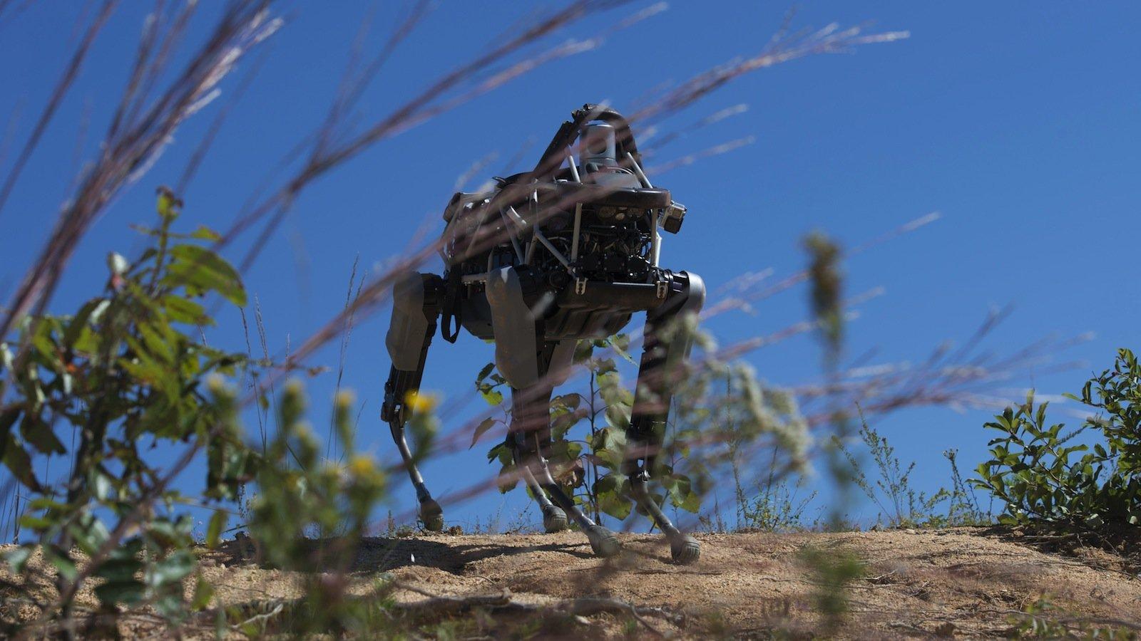 Das ist Spot, ein 73 Kilo schwerer Roboter-Hund, der bei den US-Marines einen Geländetest absolvieren musste.