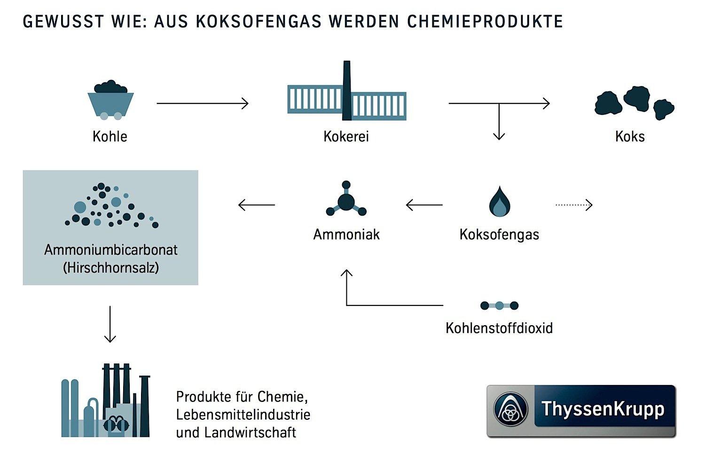 Funktionsweise der Pilotanlage: Aus dem Koksofengas entsteht unter Zugabe von Kohlenstoffdioxid Ammoniumbicarbonat – umgangssprachlich Hirschhornsalz genannt. Daraus lassen sich verschiedene Produkte herstellen